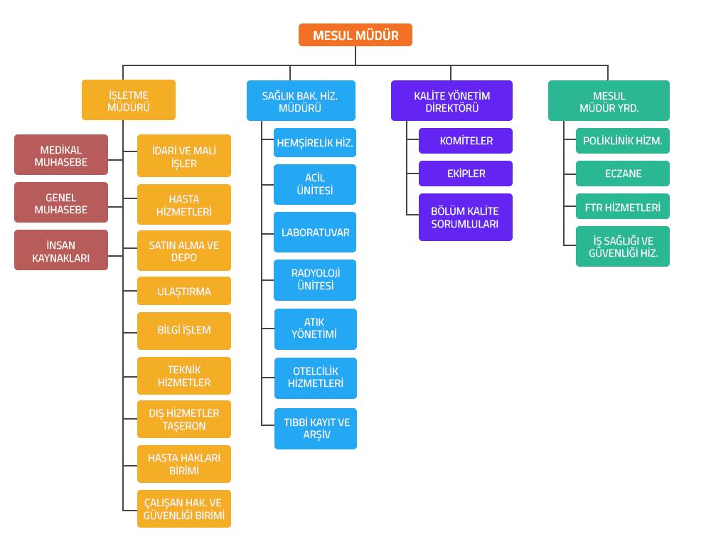 Samsun Romatem Hastanesi Organizasyon Şeması